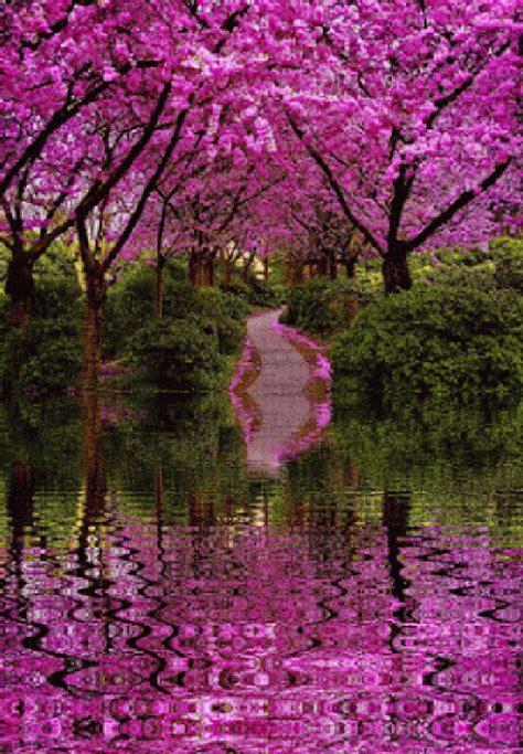 imagenes de paisajes naturales zen imagenes de jardines hermosos con movimiento