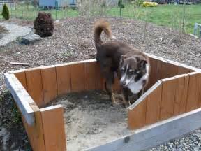 Digging A Backyard Pond 8 Dog Friendly Backyard Ideas Healthy Paws