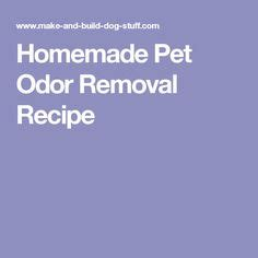 homemade dog shoo for good smell 1000 ideas about pet odor remover on pinterest pet