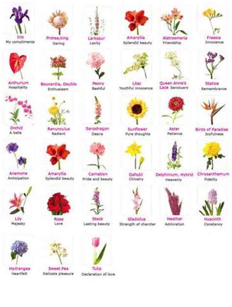 fiori elenco nomi elenco di nomi di fiori domande e risposte