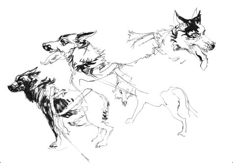 doggy gestures in urban sketching the complete guide run dog run tarosan