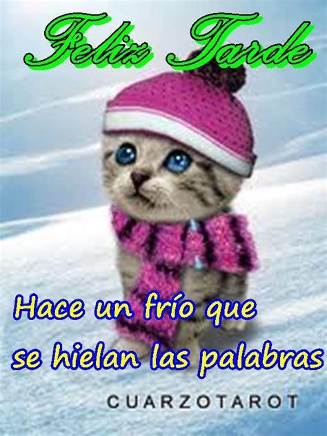 imagenes que digan tengo mucho frio si que hace frio feliztarde https www cuarzotarot