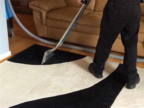 rug cleaning baltimore rug cleaning in baltimore fast reliable service