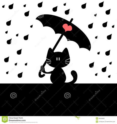 imagenes libres lluvia im 225 genes de archivo libres de regal 237 as cat under rain