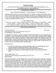 objective statement or professional summary resume sle