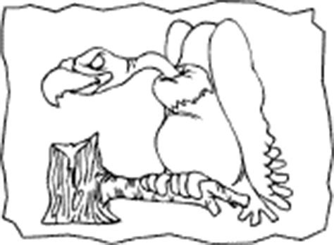 king vulture coloring page vultures coloring pages