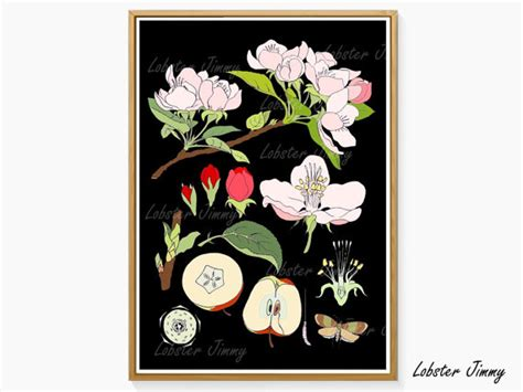 instant wall art botanical 1440585660 botanical print apple flower wall poster instant download