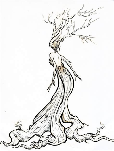 doodle draw tree pix for gt twisted tree clipart line drawings