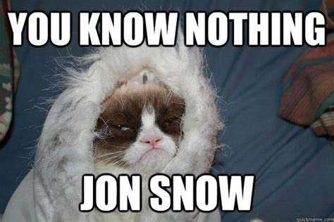 You Know Nothing Jon Snow Meme - you know nothing jon snow meme from game of thrones