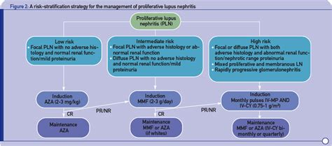 design criteria sle immunosuppressive treatment for lupus in the next decade
