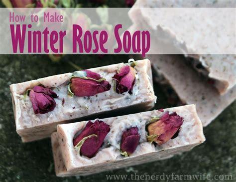 homemade rose food best 25 winter rose ideas on pinterest a frozen flower