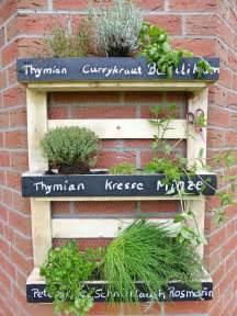 Indoor Herbal Garden - die besten 78 ideen zu kr 228 utergarten palette auf pinterest paletten garten palettengarten und