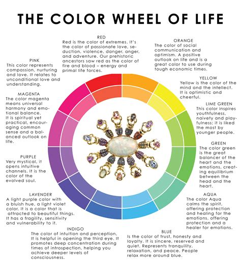 colors live the color wheel of danielavillegas