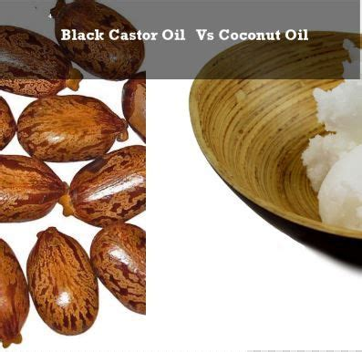 Is Coconut For Liver Detox by 32 Best Images About Castor Health Benefits On