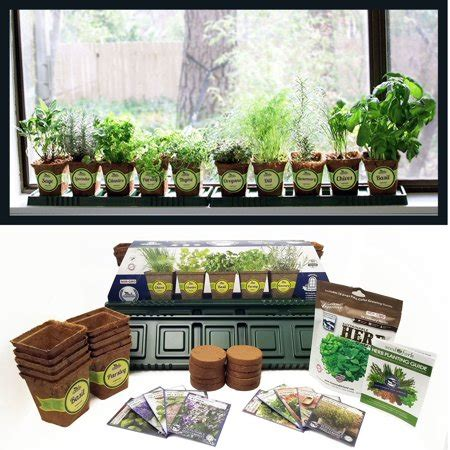 Indoor Windowsill Herb Garden by Windowsill Herb Garden Kit Complete Herb Garden Kit 10