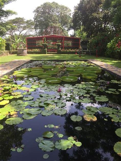 Caguas Botanical Garden Entrada Principal Picture Of Caguas Botanical Garden William Miranda Marin Caguas Tripadvisor