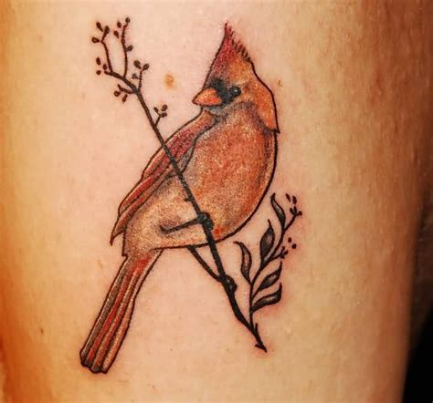 cardinal tattoo 20 cardinal tattoos ideas
