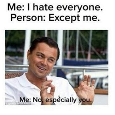 I Hate Everyone Meme - silly memes kappit