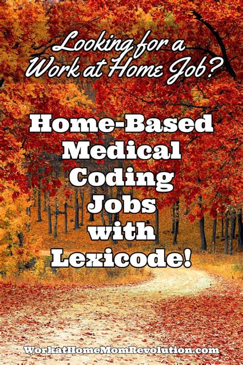 home based ambulance coding with lexicode