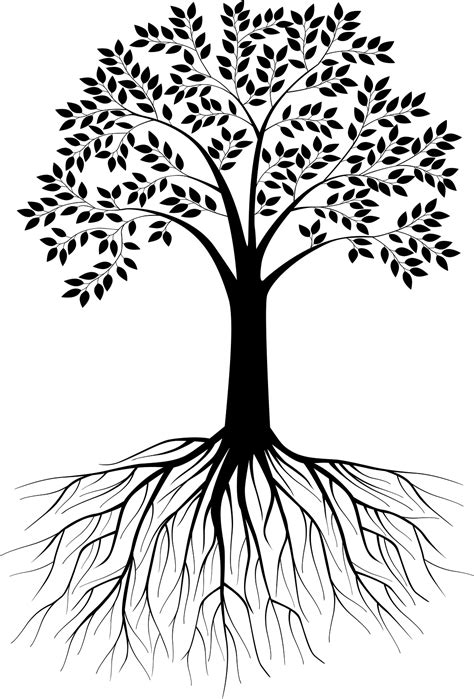 4 black tree black and white tree silhouette with roots vectorstock