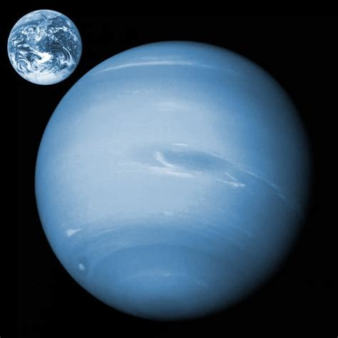 what color is neptune neptunus 1