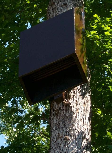 34 best images about bat houses on pinterest the