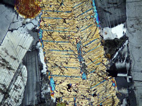 clinopyroxene in thin section wisconsin geological natural history survey 187 pigeonite