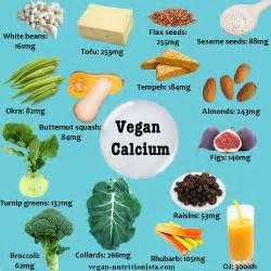 vegan calcium nutrients from plants not animals