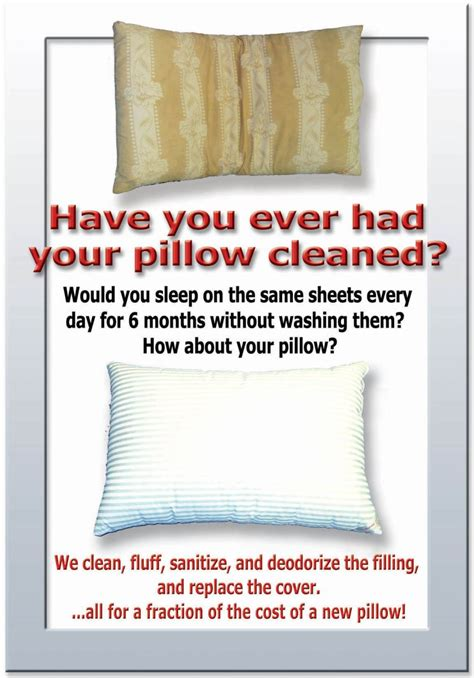 Can You Wash A Feather Pillow In The Washer by Feather Pillows Cleaning