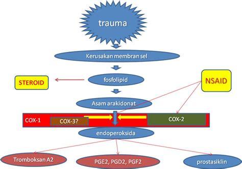 Obat Aspirin farmakologi dasar obat golongan nsaid non steroidal anti