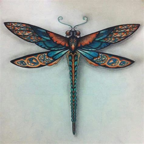 floresta encantada libelula johanna basford dragonflies pinterest copper forests  aqua