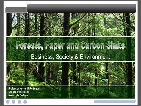 Mba 605 Society Environment by Forests Paper And Carbon Sinks