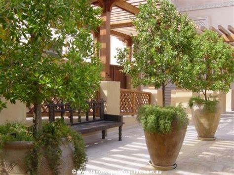 Large Pots Landscape Ideas Landscape Design Ideas Flower Pot Garden Ideas