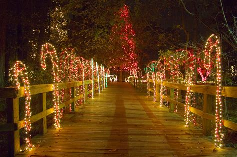lights before christmas riverbanks zoo x mas