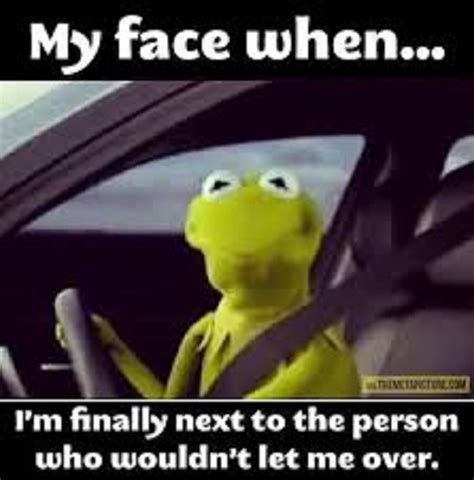 Kermit The Frog Meme Driving - kermit the frog driving
