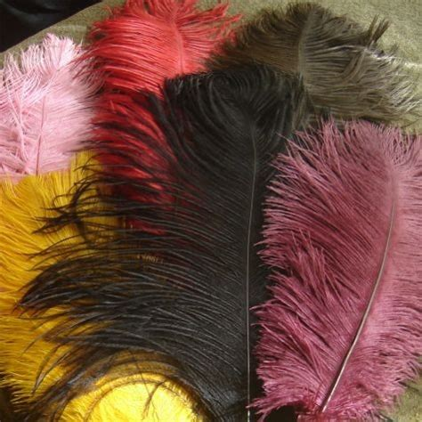 colored feathers colored ostrich drabs wholesale flowers and supplies
