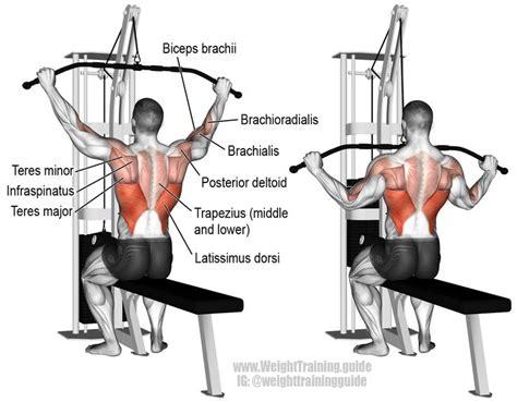 best lat exercises best 25 latissimus dorsi exercises ideas on
