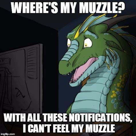 Dragon Memes - dragon memes imgflip