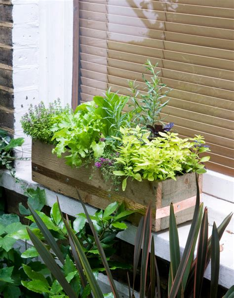 indoor window box planter interior design ideas