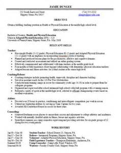 Combination Resume Template Word by Ms Word Combination Resume Templates