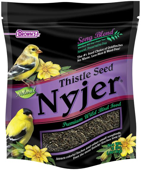 song blend 174 nyjer thistle seed finch browse by wild