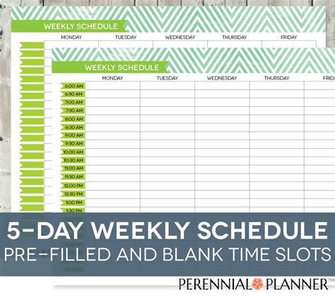 printable daily schedule by half hour daily schedule printable editable times half hourly weekly