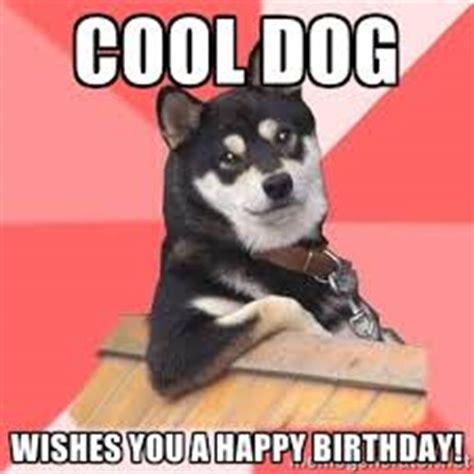 Cool Dog Meme - top dog happy birthday funny memes 2happybirthday