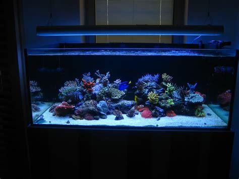 rimless aquarium club page 4 reef central community