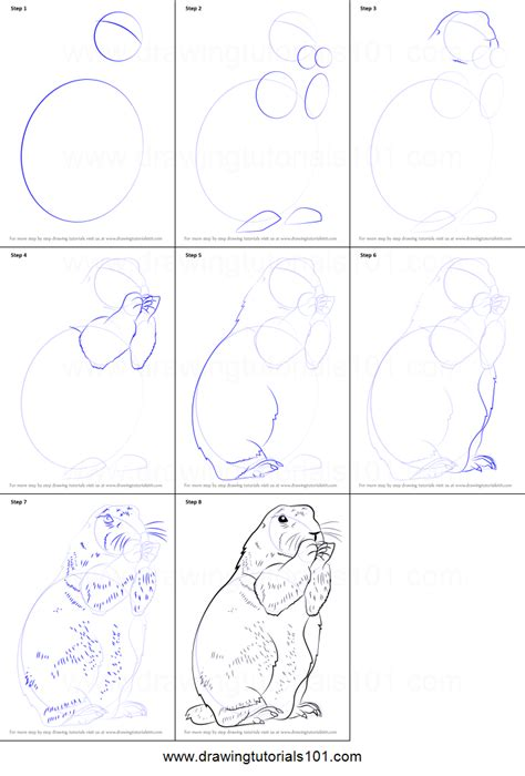 How To Draw A Prairie Dog Printable Step By Step Drawing House On The Prairie Coloring Pages