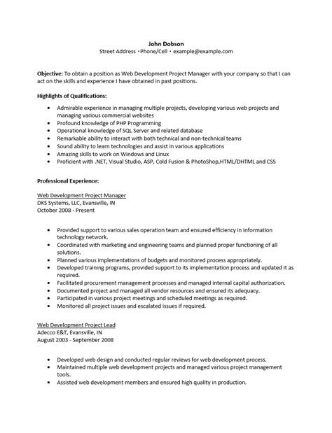 text resume sample 12 examples of plain fonts images plain text - Plain Text Resume Template
