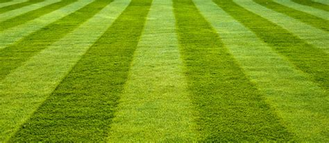 Course On Lawns What You Should by 10 Lawn Mowing Tips Lawntech