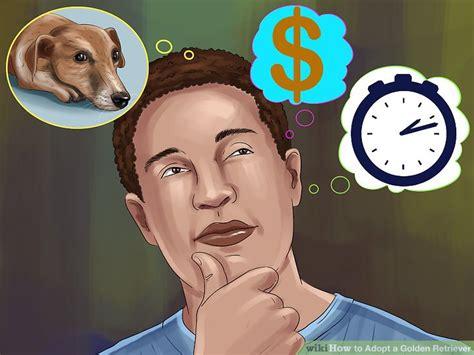 how to adopt a golden retriever how to adopt a golden retriever 8 steps with pictures wikihow