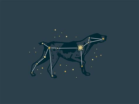 canis major constellation constellation pup and tattoo