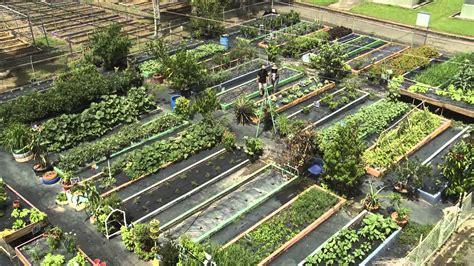 imagenes de jardines urbanos geoambiente huertos urbanos 1 3 youtube